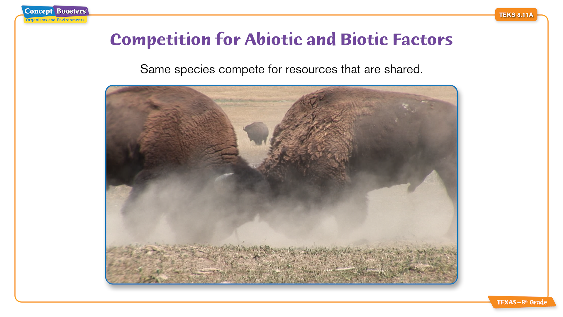 competition for abiotic and biotic factors